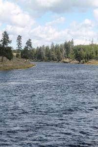 Yellowstone 2014 007
